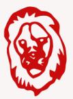 Lion Solution's Avatar